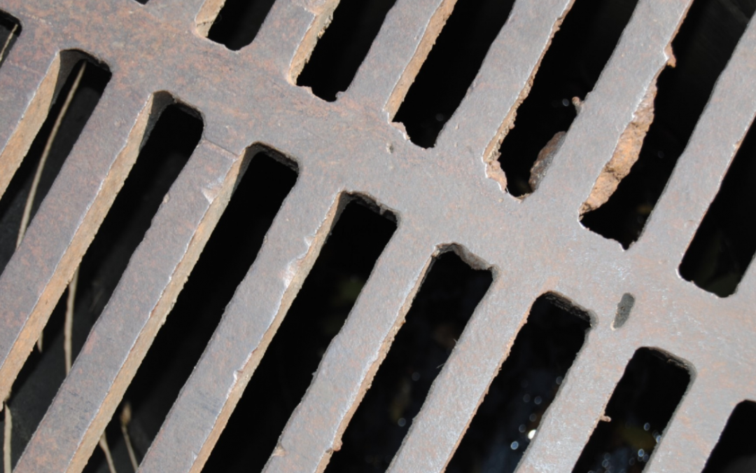 Why Choose Professional Drain Cleaning Services?